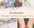 Weinlaube Selber Bauen Genial Die 59 Besten Bilder Von Geschenverpackungen In 2019