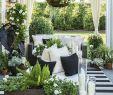 Wie Gestalte Ich Meinen Vorgarten Elegant Die 155 Besten Bilder Von Im Grünen ➯deko Für Garten
