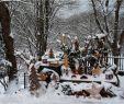 Winter Gartendeko Best Of Winterliche Gartendeko Foto & Bild