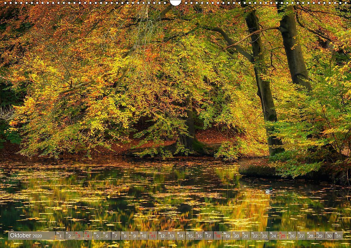 chemnitz stadt und natur wandkalender 2020 din a2