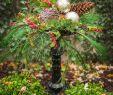 Winterdeko Garten Selber Machen Inspirierend Dekoideen Mit Naturmaterial