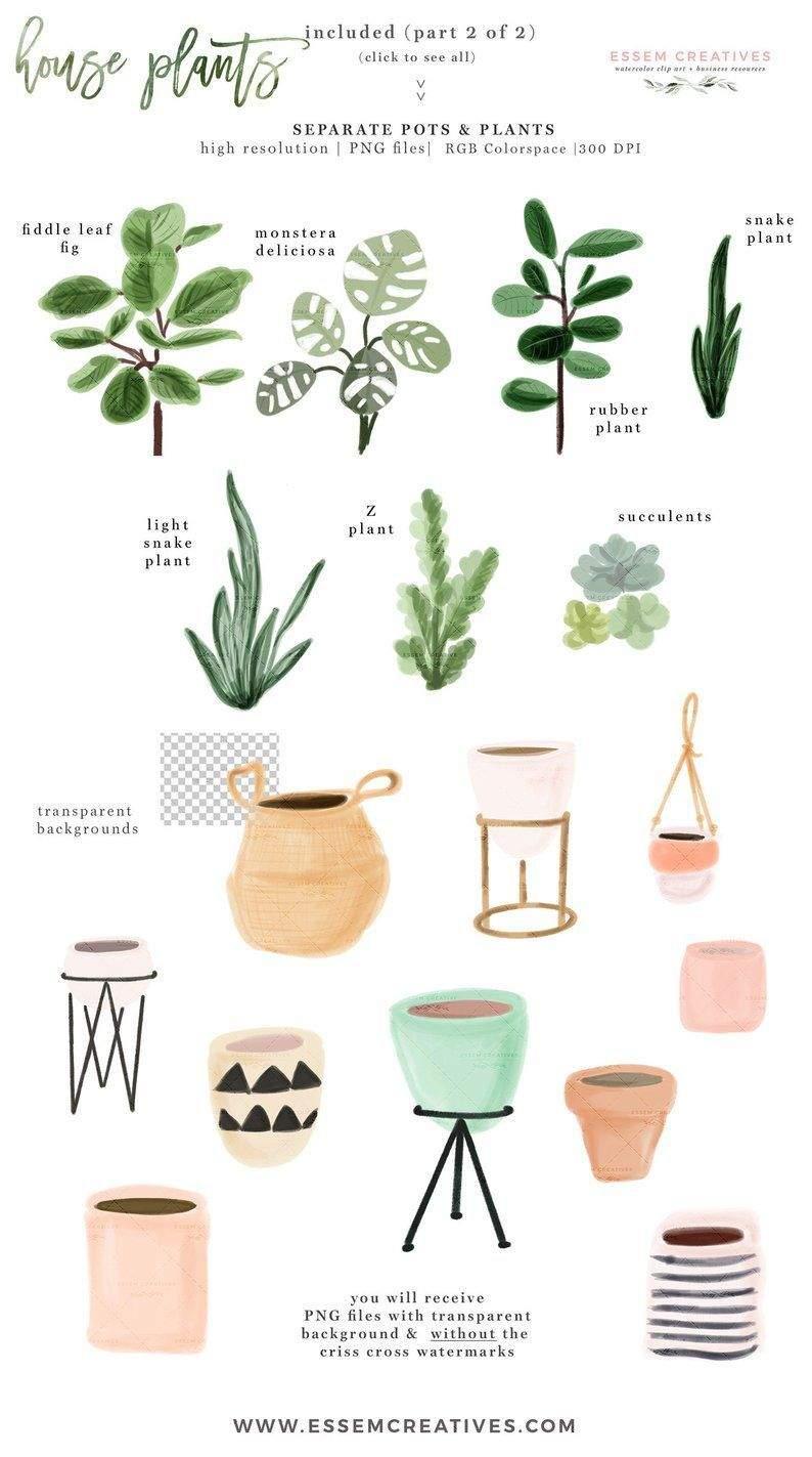 wohnen und garten zeitschrift luxus aquarell zimmer pflanzen clipart zimmerpflanzen topfpflanze of wohnen und garten zeitschrift