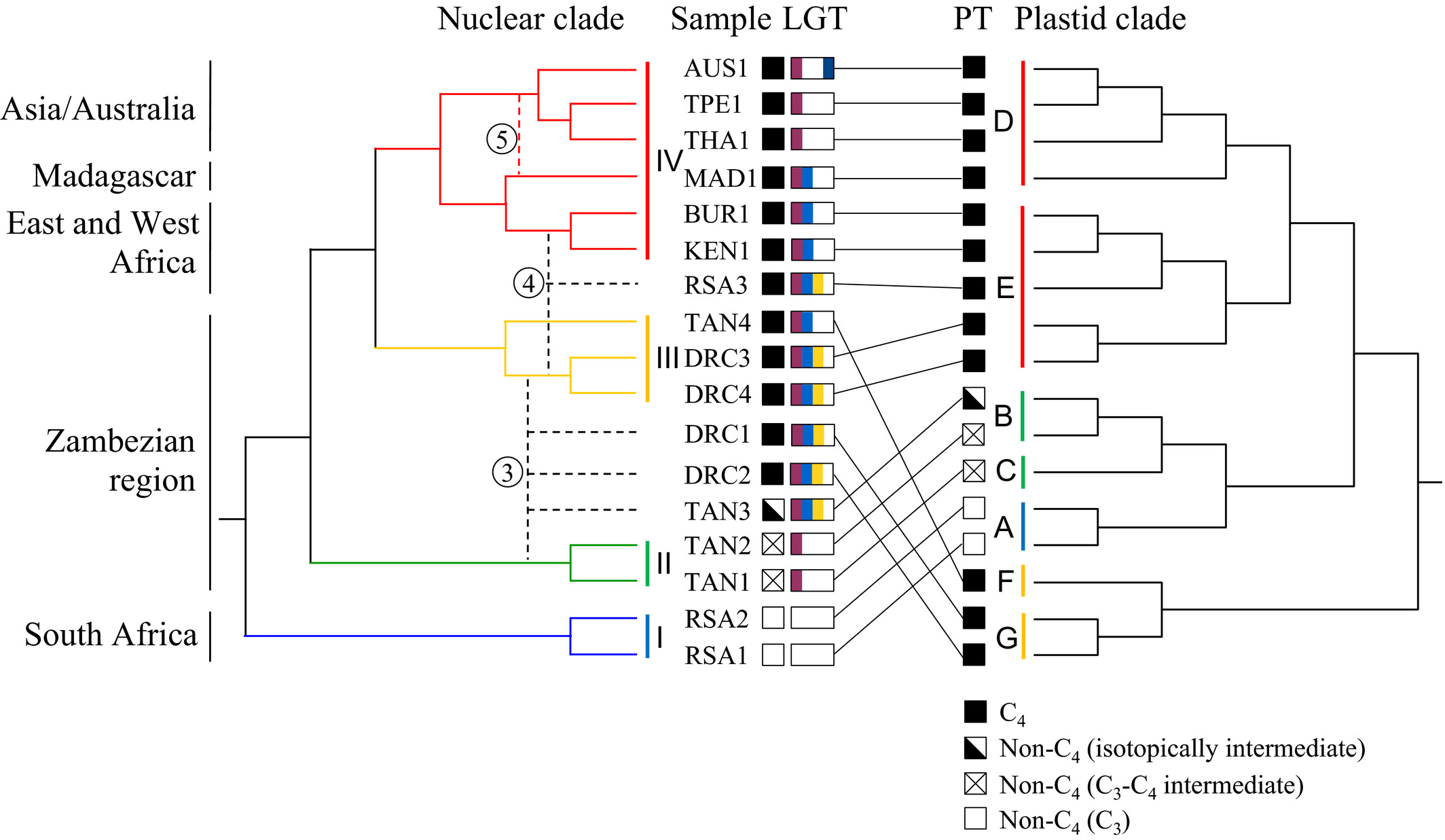 Asia Garten Ottobrunn Einzigartig Genome Biogeography Reveals the Intraspecific Spread Of