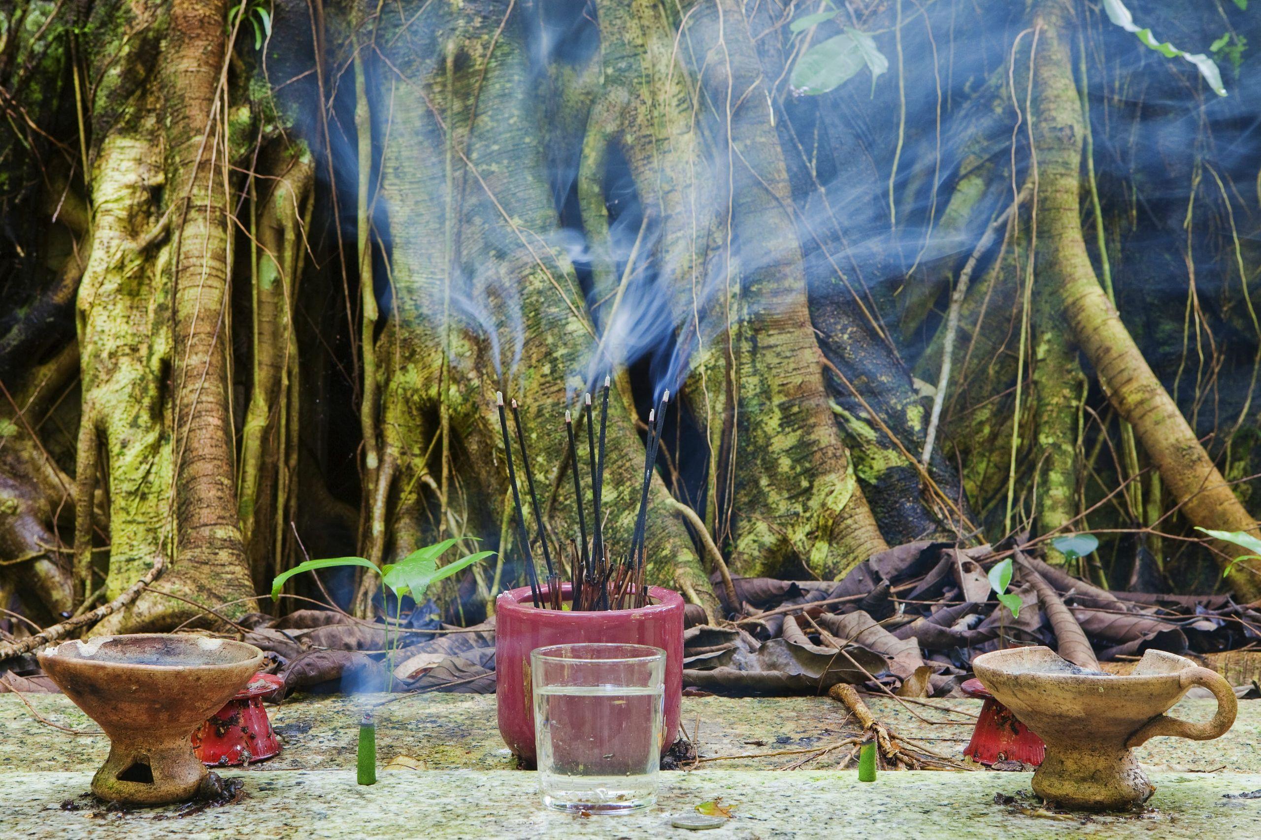 Asia Garten Ottobrunn Inspirierend Teluk Bahang Travel