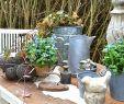 Ausgefallen Dekoideen Garten Best Of Ausgefallene Gartendeko Selber Machen