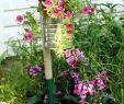 Ausgefallen Dekoideen Garten Genial Idea 90 Deco Untuk Membuat anda Sendiri Untuk Suasana Musim
