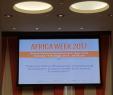 Ausgefallen Dekoideen Garten Neu Financing Africa S Infrastructure and Agricultural