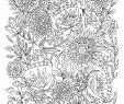 Ausmalbilder Garten Frisch Free Coloring Pages Printables