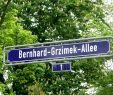 Bahnhof Zoologischer Garten Schön Bernhard Grzimek Allee –