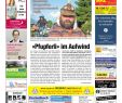 Baumstamm Verschönern Frisch Wiggertaler 37 15 by Zt Me N Ag issuu