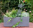 Baumstumpf Garten Dekorieren Genial Beetstecker Wiedehopf 1 5mm Materialstärke
