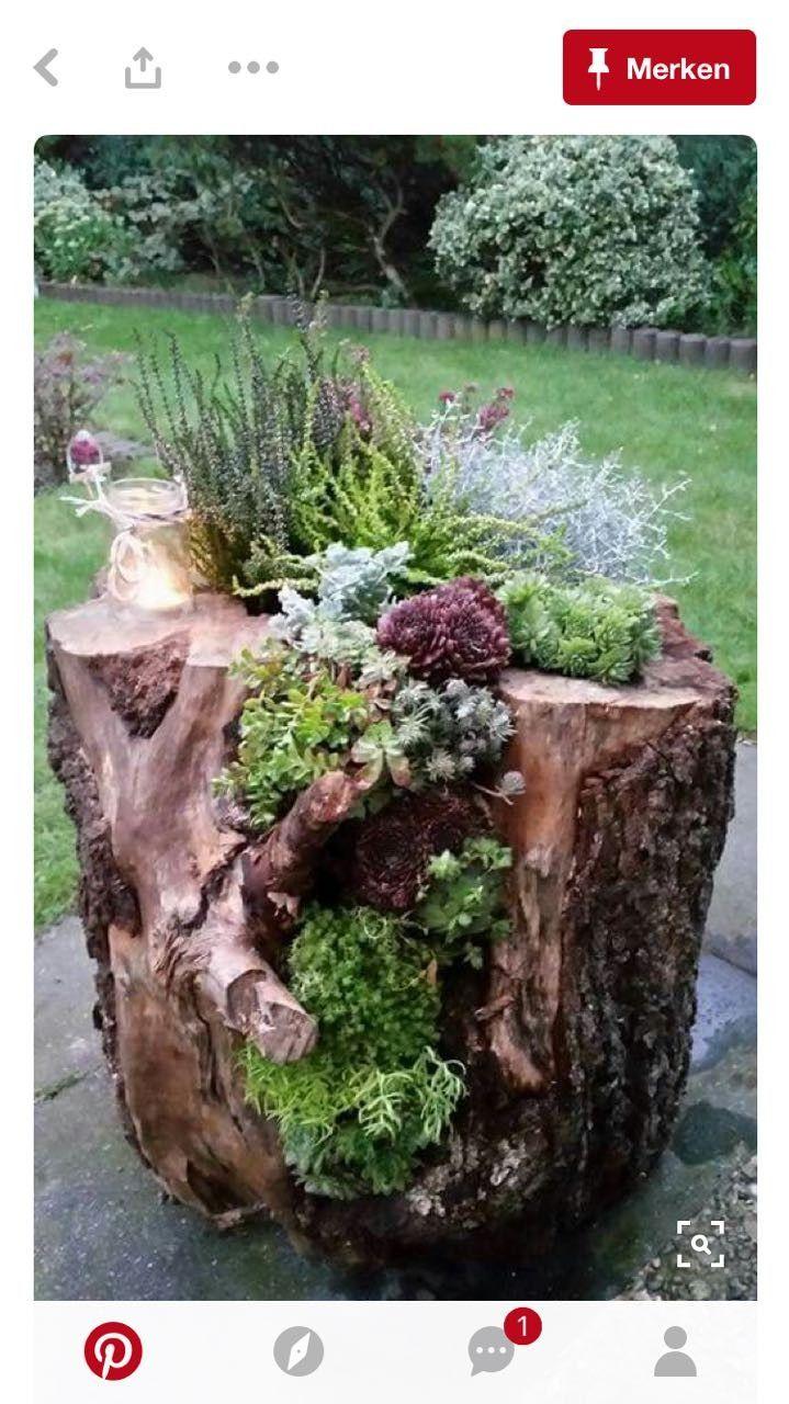 Baumstumpf Garten Dekorieren Inspirierend Pin Von Imw Auf Gartendeko Floral