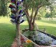 Baumstumpf Garten Dekorieren Luxus Awesome 85 Awesome Backyard Ponds Und Wassergarten