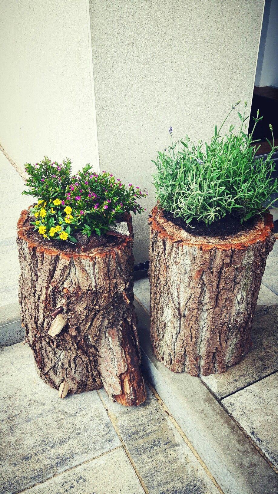 garten mit alten sachen dekorieren mit hohler baumstamm bepflanzt petrova baumstamm garten 36 und mit garten mit alten sachen dekorieren