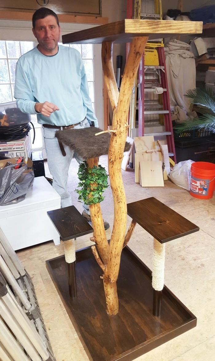 kratzbaum selber bauen aus einem gef C3 A4llten baum einen kratzbaum selber bauen