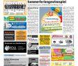 Baumstumpf Verschönern Schön Wochenzeitung Altmuehlfranken Kw 30 19 by Wochenzeitung