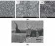 Bayer Garten Einzigartig Nanomaterials Free Full Text