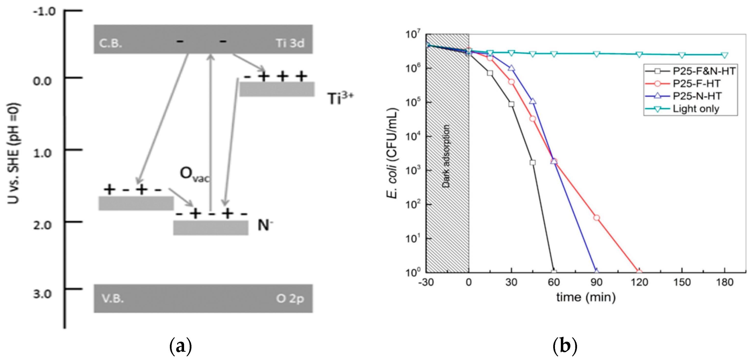 nanomaterials 10 g026