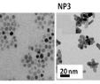 Bayer Garten Genial Nanomaterials Free Full Text