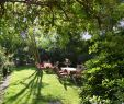 Berlin Britzer Garten Best Of Das Literaturhotel Berlin Germany Booking