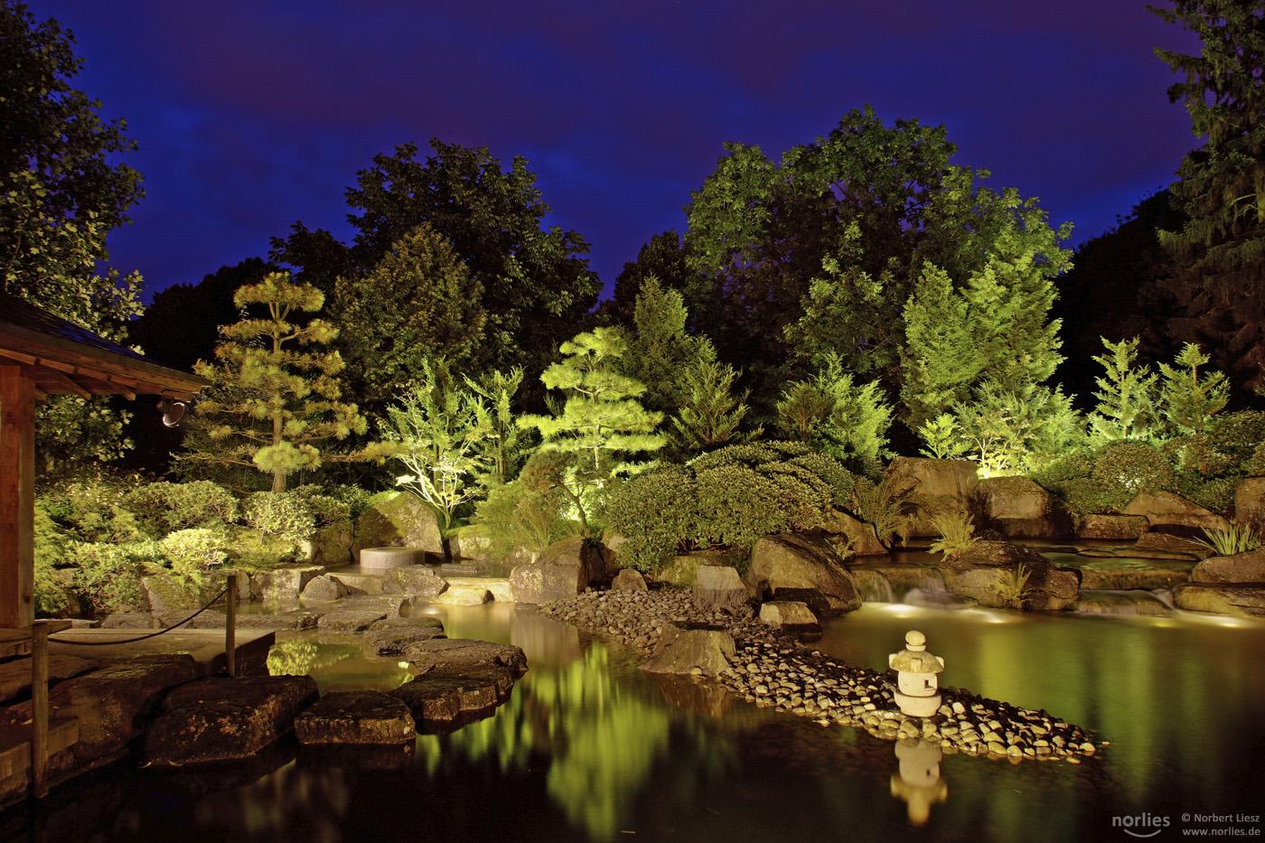 Botanischer Garten Augsburg Programm Einzigartig Lange Nacht Der Natur Im Botanischen Garten – Nanu