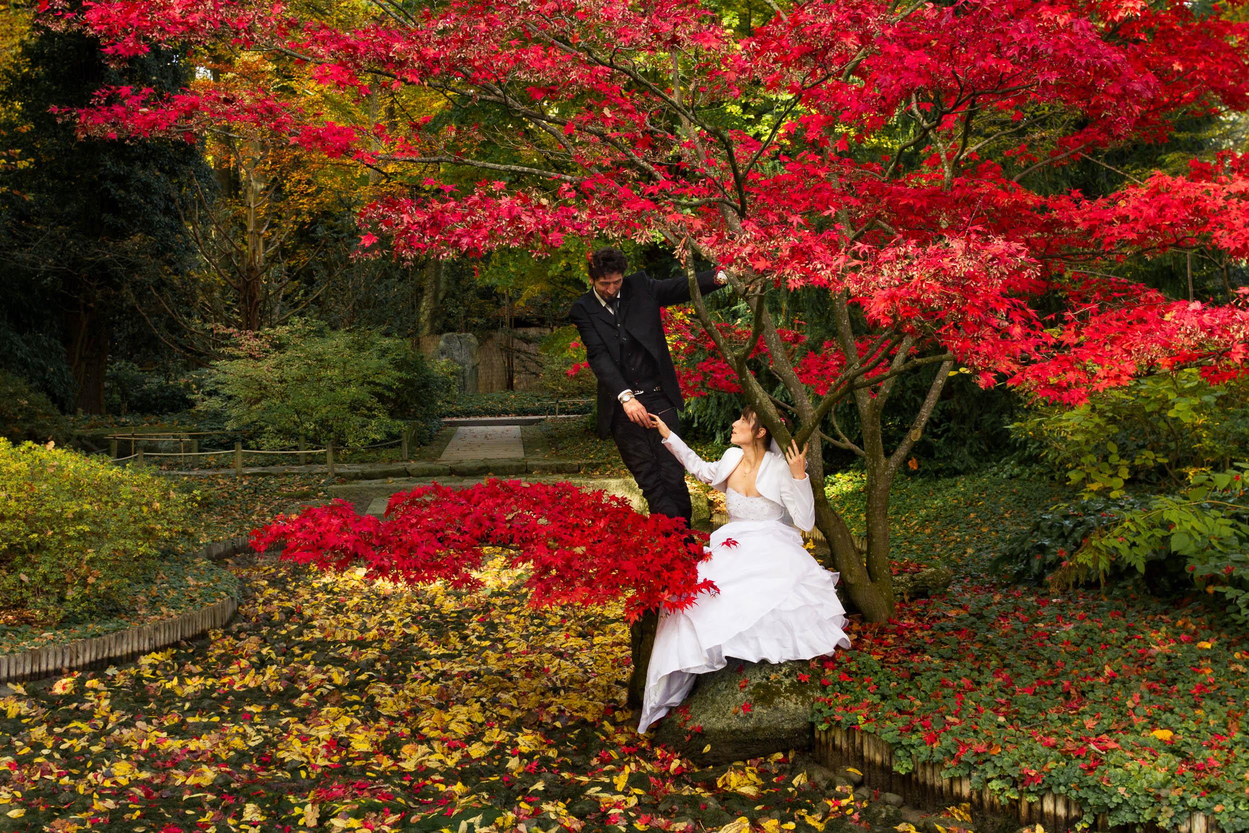 Botanischer Garten Augsburg Programm Elegant Hochzeitsfotograf Augsburg München Zammgfasst