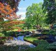 Botanischer Garten Augsburg Programm Elegant Natur Pur Im Botanischen Garten – Bayerisch Schwaben Blog