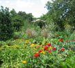 Botanischer Garten Augsburg Programm Genial Datei Augsburg Bot Garten Oekogarten –