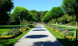 22 Schön Botanischer Garten Augsburg Programm