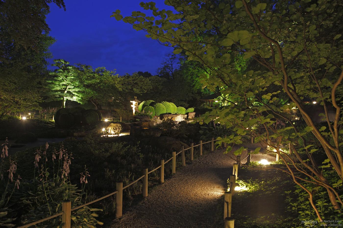 Botanischer Garten Augsburg Programm Neu Lange Nacht Der Natur Im Botanischen Garten – Nanu