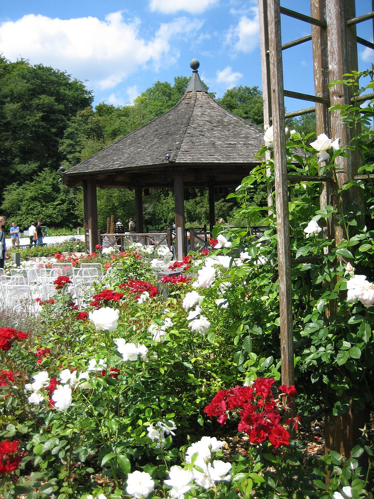 1200px Augsburg Bot Garten Am Rosenpavillon