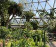 Botanischer Garten Bonn Neu Botanical Garden Dusseldorf 2020 All You Need to Know