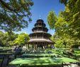 Botanischer Garten Dresden Inspirierend the Best Munich Beer Gardens