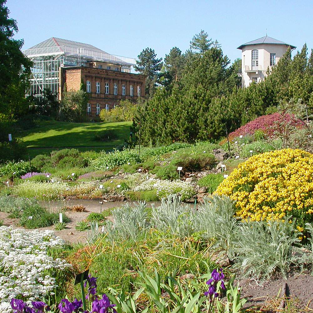 botanischer garten halle offnungszeiten elegant botanischer garten der martin luther universitat halle of botanischer garten halle offnungszeiten