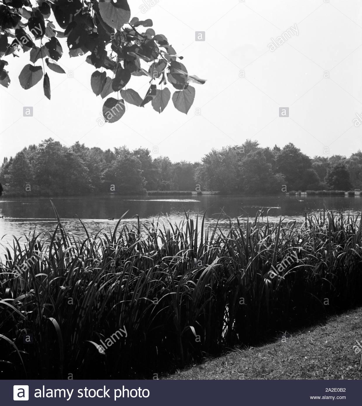 ein park in chemnitz deutschland 1930er jahre a public garden at chemnitz germany 1930s 2A2E0B2