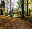 Botanischer Garten Hamburg Genial File Nice Bridge In the Jenisch Park Hamburg