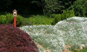 75 Best Of Botanischer Garten Hamburg
