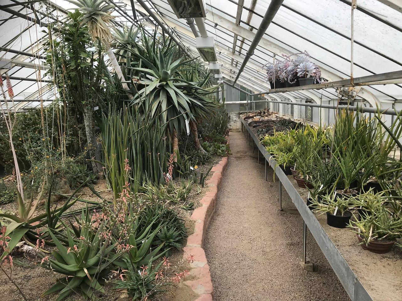 botanischer garten der