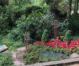 Botanischer Garten Heidelberg Neu Grabstätte Von Generalfeldmarschall Erwin Rommel Travel