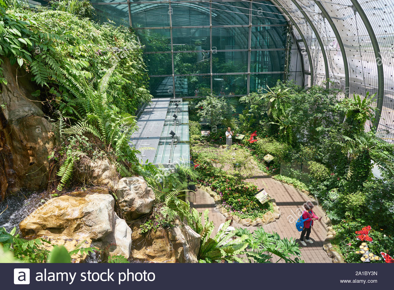 singapore circa april 2019 interior shot of butterfly garden in changi international airport 2A1BY3N