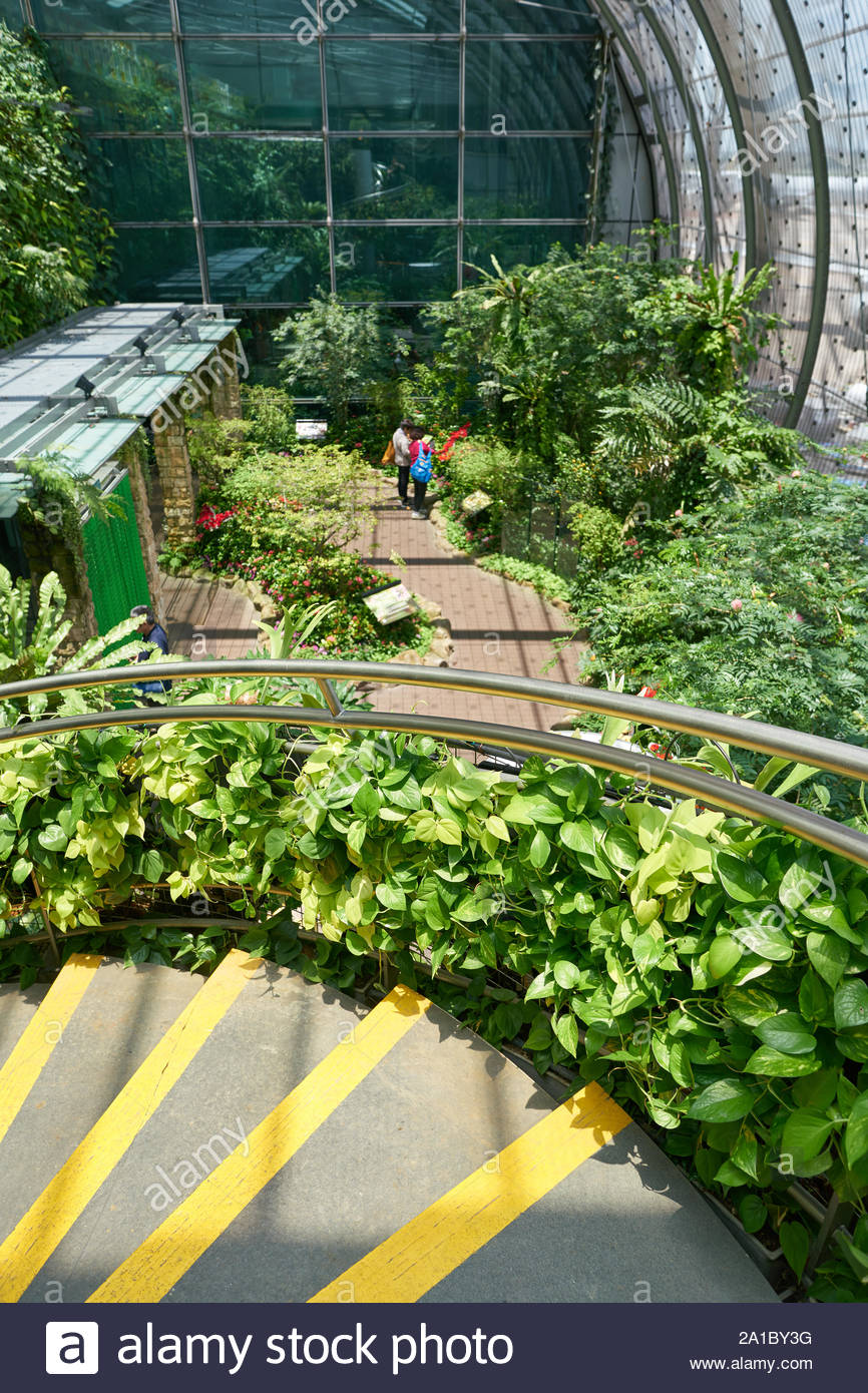 singapore circa april 2019 interior shot of butterfly garden in changi international airport 2A1BY3G