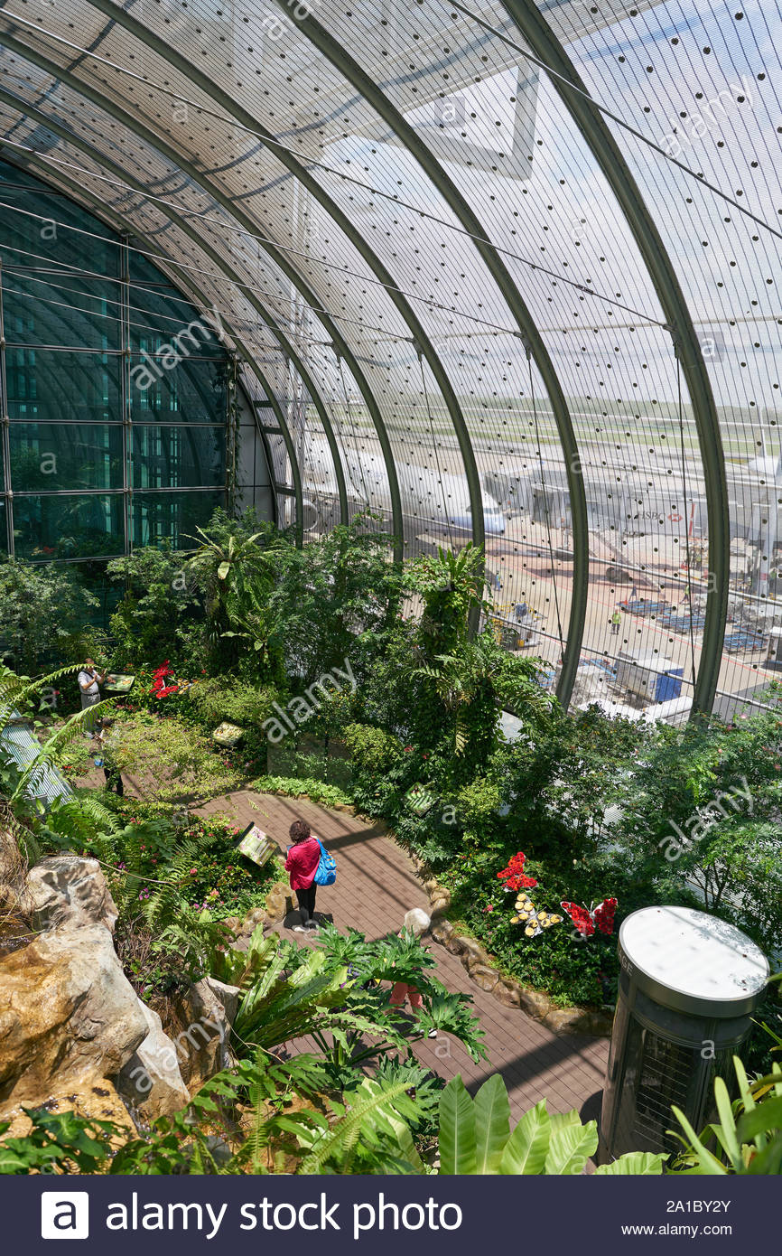 singapore circa april 2019 interior shot of butterfly garden in changi international airport 2A1BY2Y