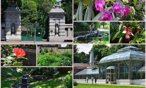 39 Inspirierend Botanischer Garten München