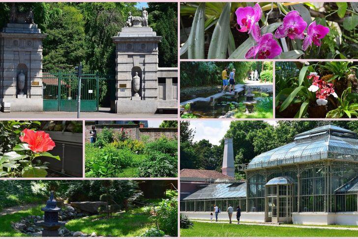 Botanischer Garten München Neu Jevremovac Botanical Garden Belgrade 2020 All You Need