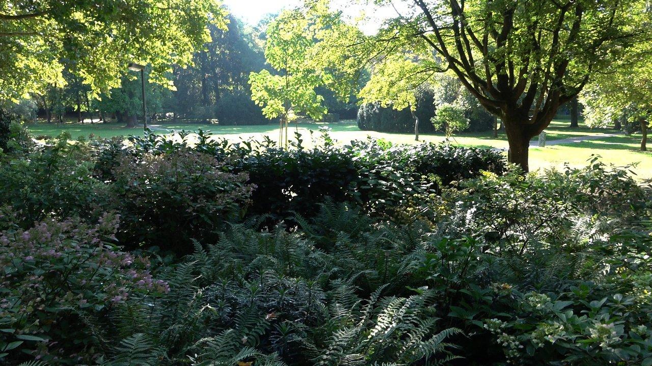 Botanischer Garten Rostock Frisch Alter Botanischer Garten Tubingen 2020 All You Need to