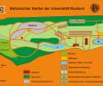 Botanischer Garten Rostock Frisch File Botanischer Garten Rostock Plan 2010 Wikimedia