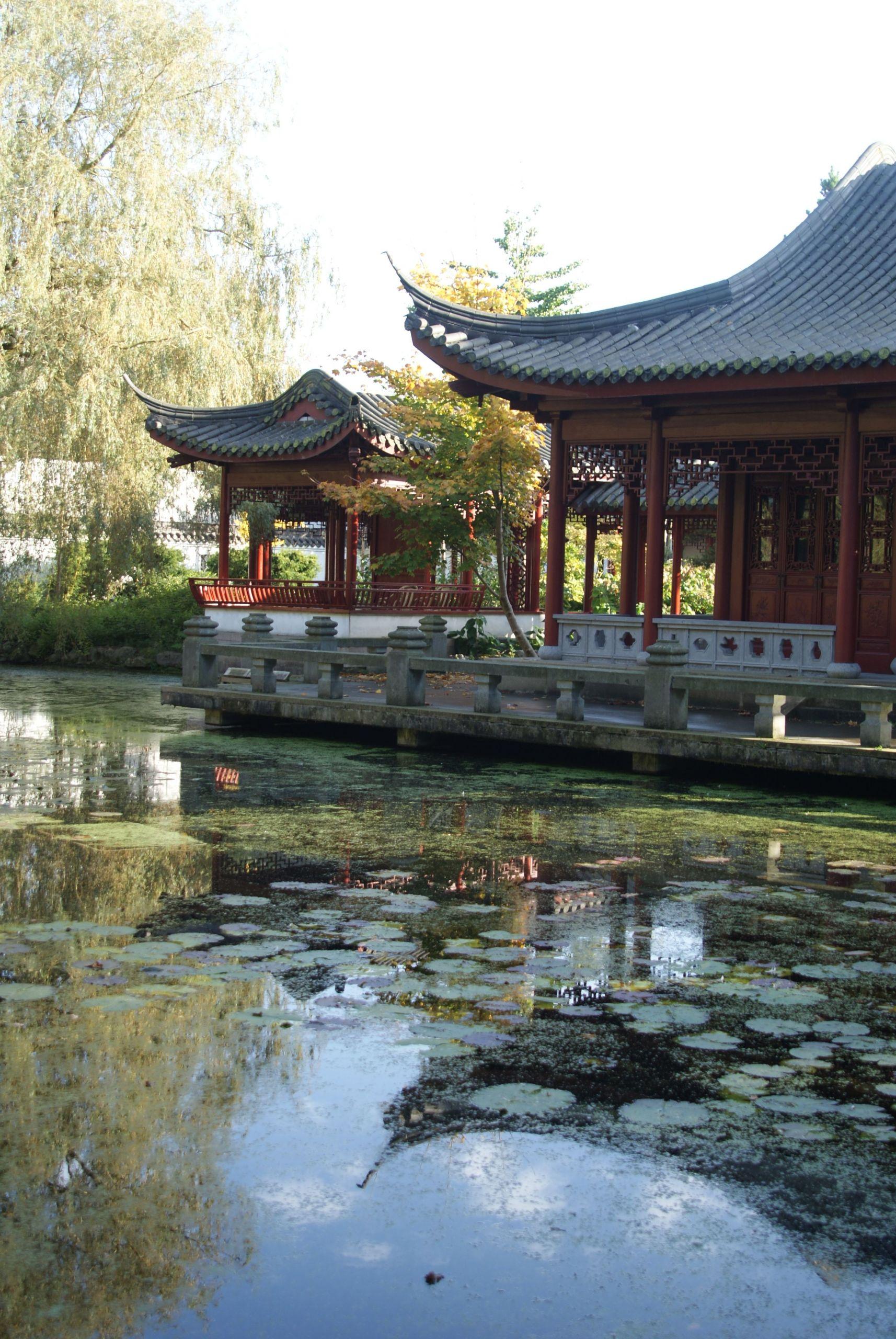 China Garten Best Of Hortus In 2020