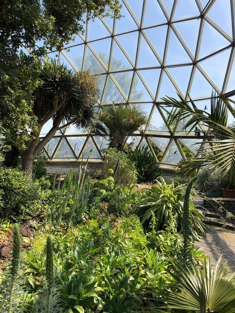 China Garten Genial Botanical Garden Dusseldorf 2020 All You Need to Know