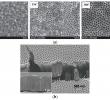China Garten Genial Nanomaterials Free Full Text