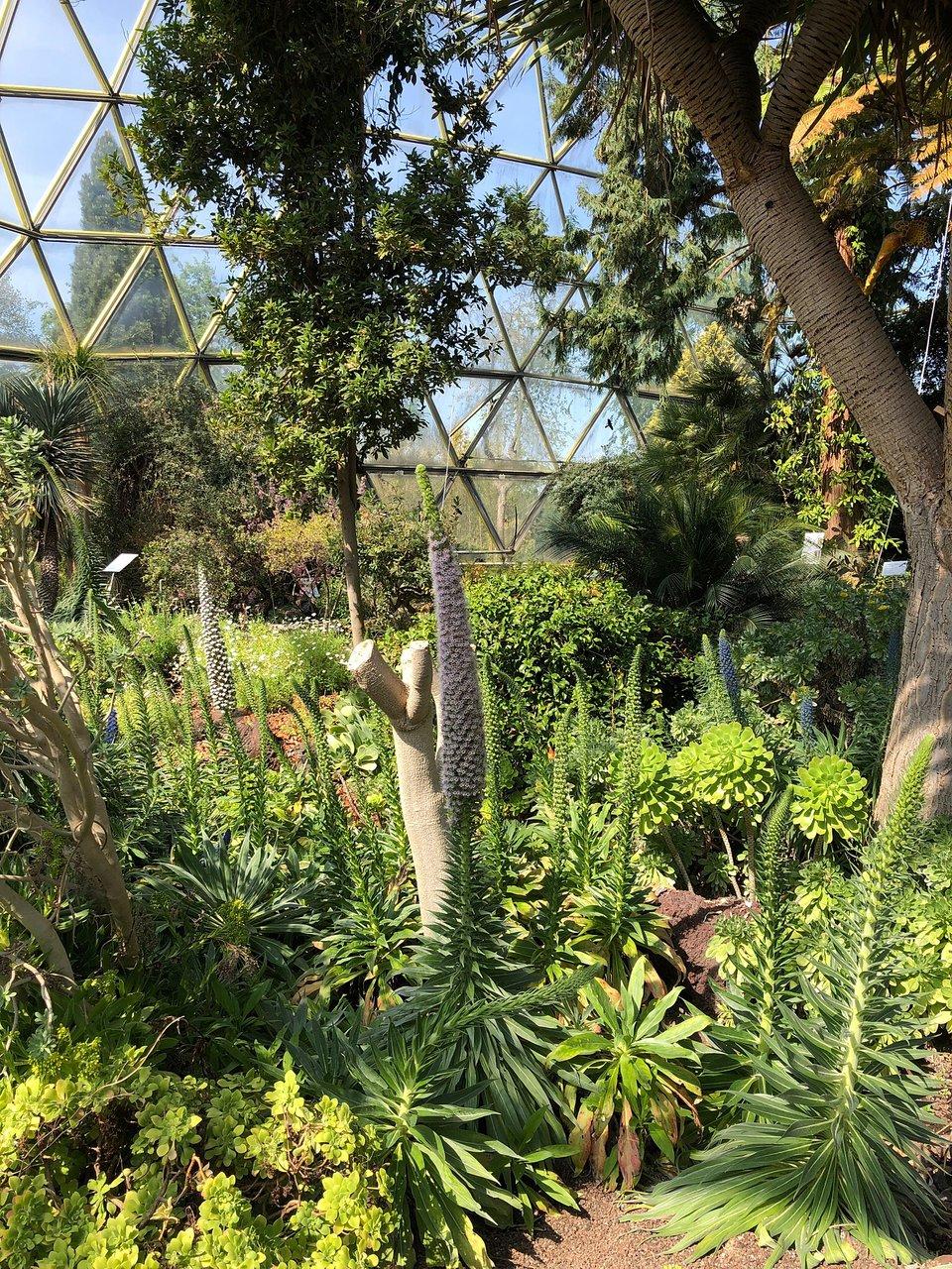 China Garten Luxus Botanical Garden Dusseldorf 2020 All You Need to Know